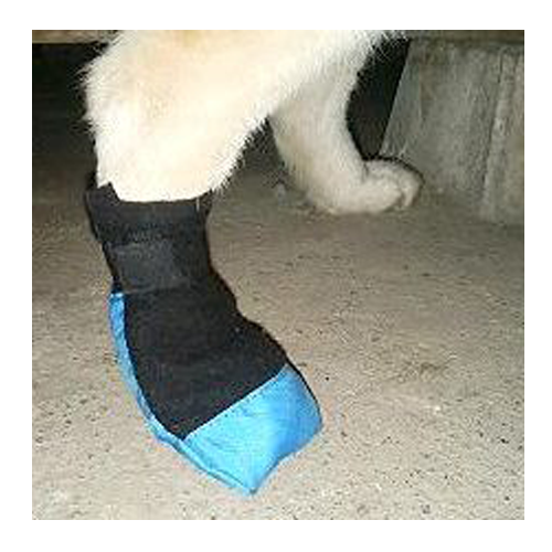 犬ぞりブーツ