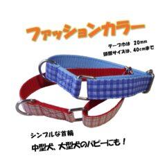 中型犬首輪